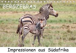 BERGZEBRAS Impressionen aus Südafrika (Tischkalender 2020 DIN A5 quer) von Thula