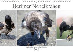 Berliner Nebelkrähen (Wandkalender 2019 DIN A4 quer) von Schilling,  Linda