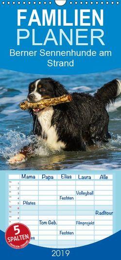 Berner Sennenhunde am Strand – Familienplaner hoch (Wandkalender 2019 , 21 cm x 45 cm, hoch) von Starick,  Sigrid