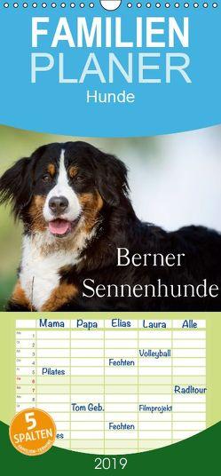 Berner Sennenhunde – Familienplaner hoch (Wandkalender 2019 , 21 cm x 45 cm, hoch) von Noack,  Nicole