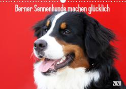 Berner Sennenhunde machen glücklich (Wandkalender 2020 DIN A3 quer) von SchnelleWelten