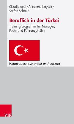 Beruflich in der Türkei von Appl,  Claudia, Koytek,  Annalena, Plannerer,  Jörg, Schmid,  Stefan