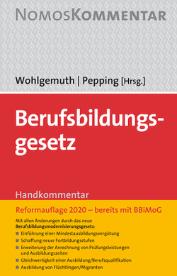 Berufsbildungsgesetz von Pepping,  Georg, Wohlgemuth,  Hans Hermann