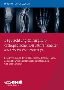 Berufskrankheiten nach physikalischen Einwirkungen von Ludolph,  Elmar, Meyer-Clement,  Michael