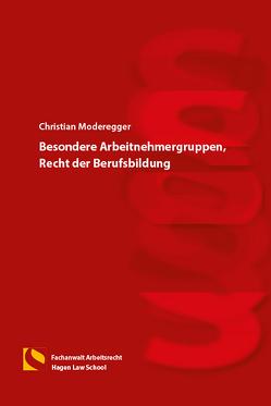 Besondere Arbeitnehmergruppen, Recht der Berufsbildung von Gräfin von Schlieffen,  Katharina, Moderegger,  Christian, Zwiehoff,  Gabriele