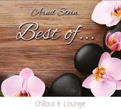 Best of Chillout & Lounge von Stein,  Arnd