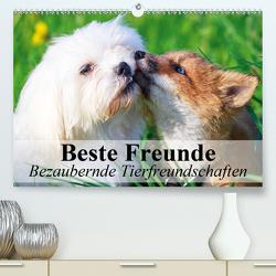 Beste Freunde – Bezaubernde Tierfreundschaften (Premium, hochwertiger DIN A2 Wandkalender 2021, Kunstdruck in Hochglanz) von Stanzer,  Elisabeth