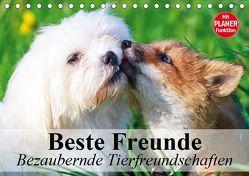 Beste Freunde. Bezaubernde Tierfreundschaften (Tischkalender 2019 DIN A5 quer) von Stanzer,  Elisabeth