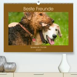 Beste Freunde – Spielende Hunde (Premium, hochwertiger DIN A2 Wandkalender 2020, Kunstdruck in Hochglanz) von Bölts,  Meike