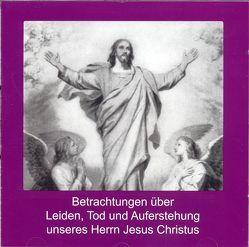 Betrachtungen über Leiden, Tod und Auferstehung unseres Herrn Jesus Christus von Bernlochner,  Christa, Haug,  Christian M