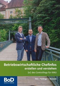 Betriebswirtschaftliche Chefinfos erstellen und verstehen von Beranek,  Roland, Eisl,  Christoph, Haidinger,  Lukas