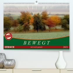 Bewegt mit Licht gemalt (Premium, hochwertiger DIN A2 Wandkalender 2021, Kunstdruck in Hochglanz) von Flori0