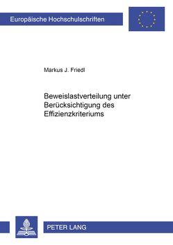 Beweislastverteilung unter Berücksichtigung des Effizienzkriteriums von Friedl,  Markus J.