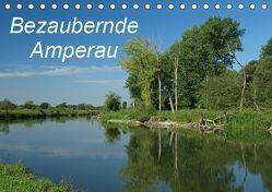 Bezaubernde Amperau (Tischkalender 2019 DIN A5 quer) von Brigitte Deus-Neumann,  Dr.