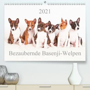 Bezaubernde Basenji-Welpen (Premium, hochwertiger DIN A2 Wandkalender 2021, Kunstdruck in Hochglanz) von Joswig,  Angelika