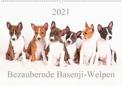 Bezaubernde Basenji-Welpen (Wandkalender 2021 DIN A2 quer) von Joswig,  Angelika