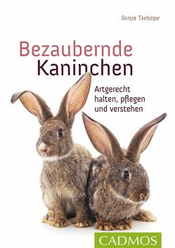 Bezaubernde Kaninchen von Tschöpe,  Sonja