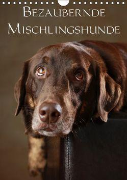Bezaubernde Mischlingshunde (Wandkalender 2019 DIN A4 hoch) von Behr,  Jana