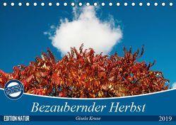 Bezaubernder Herbst (Tischkalender 2019 DIN A5 quer) von Kruse,  Gisela