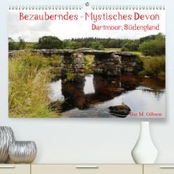 Bezauberndes – Mystisches Devon Dartmoor, Südengland (Premium, hochwertiger DIN A2 Wandkalender 2021, Kunstdruck in Hochglanz) von M. Gibson,  Ilse