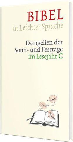 Bibel in Leichter Sprache von Bauer,  Dieter, Ettl,  Claudio, Mels,  Paulis