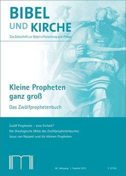 Bibel und Kirche / Kleine Propheten ganz groß von Backhaus,  Franz Josef