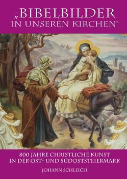 Bibelbilder in unseren Kirchen von Schleich,  Johann