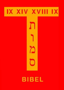Bibelhandschrift / Bibel II von Stein,  Thomas