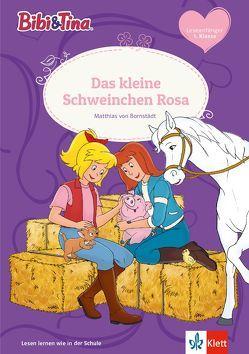 Bibi & Tina – Das kleine Schweinchen Rosa von Bornstädt,  Matthias von