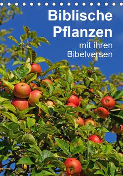 Biblische Pflanzen mit ihren Bibelversen (Tischkalender 2019 DIN A5 hoch) von Vorndran,  Hans-Georg