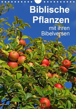 Biblische Pflanzen mit ihren Bibelversen (Wandkalender 2021 DIN A4 hoch) von Vorndran,  Hans-Georg