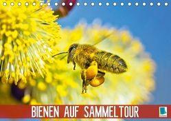 Bienen auf Sammeltour (Tischkalender 2018 DIN A5 quer) von CALVENDO,  k.A.