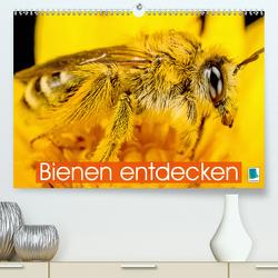 Bienen entdecken (Premium, hochwertiger DIN A2 Wandkalender 2021, Kunstdruck in Hochglanz) von CALVENDO