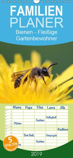 Bienen – Fleißige Gartenbewohner – Familienplaner hoch (Wandkalender 2019 , 21 cm x 45 cm, hoch) von Hahnefeld,  Silvia