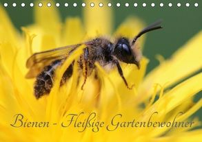 Bienen – Fleißige Gartenbewohner (Tischkalender 2018 DIN A5 quer) von Hahnefeld,  Silvia