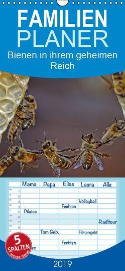 Bienen in ihrem geheimen Reich – Familienplaner hoch (Wandkalender 2019 , 21 cm x 45 cm, hoch) von Bangert,  Mark