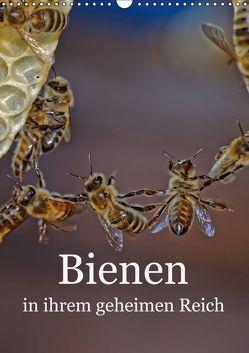 Bienen in ihrem geheimen Reich (Wandkalender 2019 DIN A3 hoch)