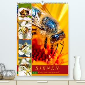 BIENEN – Kleine Nützlinge ganz nah (Premium, hochwertiger DIN A2 Wandkalender 2020, Kunstdruck in Hochglanz) von Dreegmeyer,  Andrea