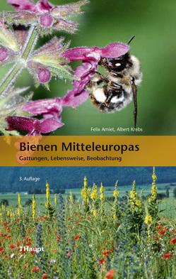 Bienen Mitteleuropas von Amiet,  Felix, Krebs,  Albert, Mueller,  Andreas