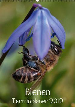 Bienen-Terminplaner 2019 (Wandkalender 2019 DIN A2 hoch)