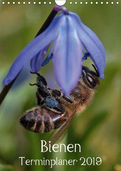 Bienen-Terminplaner 2019 (Wandkalender 2019 DIN A4 hoch) von Hahnefeld,  Silvia