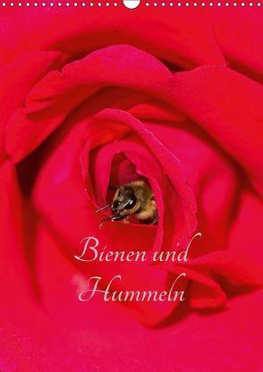 Bienen und Hummeln (Wandkalender 2018 DIN A3 hoch) von Bangert,  Mark