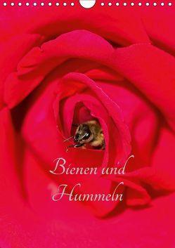 Bienen und Hummeln (Wandkalender 2018 DIN A4 hoch) von Bangert,  Mark