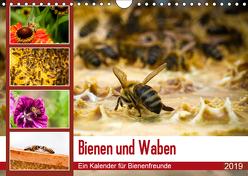 Bienen und Waben (Wandkalender 2019 DIN A4 quer) von Wilms,  Barbara