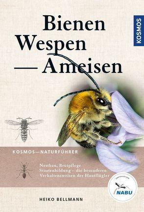 Bienen, Wespen, Ameisen von Bellmann,  Heiko