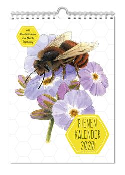 Bienenkalender 2020 von Pustelny,  Nicole