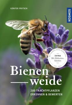 Bienenweide von Pritsch,  Günter