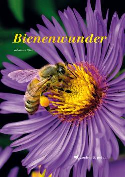 Bienenwunder von Wirz,  Johannes