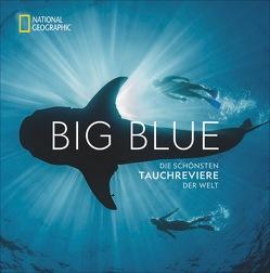 Big Blue von Miller,  Carrie, Skerry,  Brian
