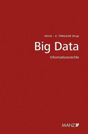 Big Data von Kalss,  Susanne, Torggler,  Ulrich
